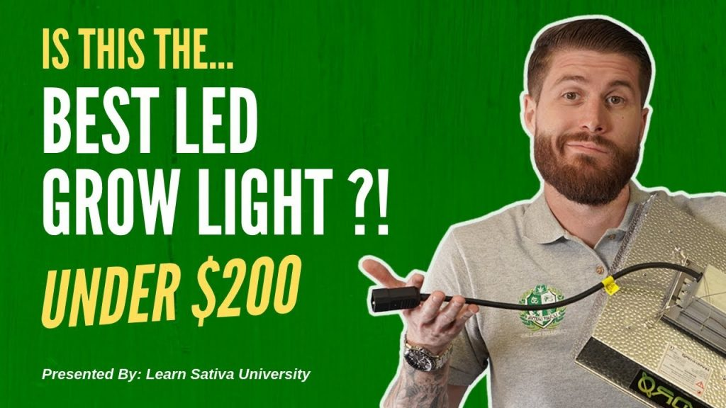 Best LED Grow Lights (Under $200)